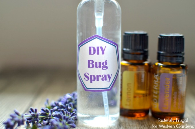 Kid Safe Bug Spray: Make your own bug spray at home in minutes and with just 4 ingredients!