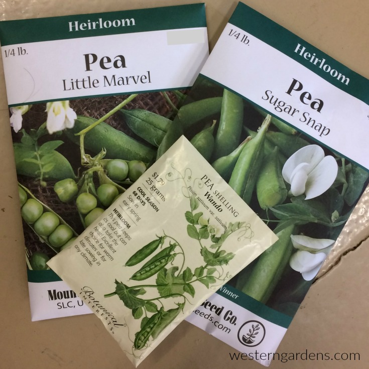 Find quality seeds of peas to plant at Western Garden Centers, garden shop in Utah