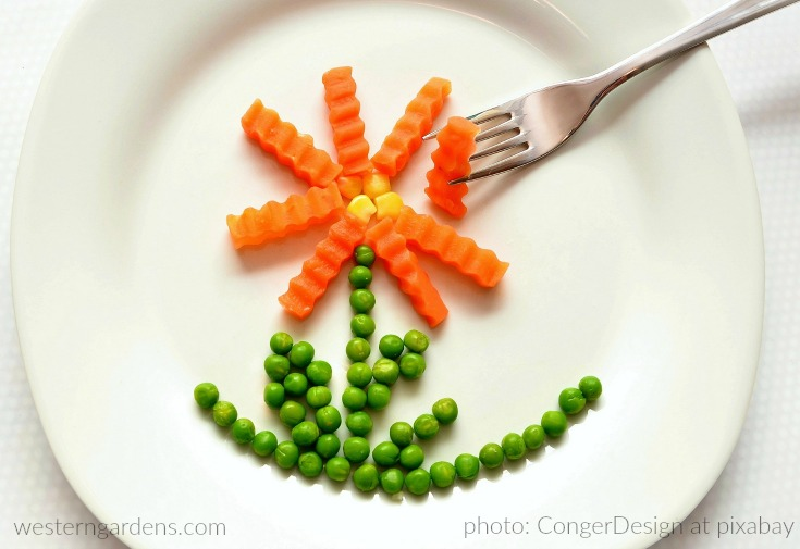 Peas and carrots on dinner plate - photo by CongerDesign - Pixabay CC0 license