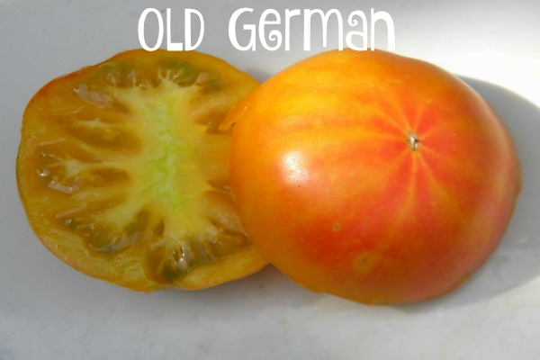 Old German tomatoes are large beefsteaks that are sweet.
