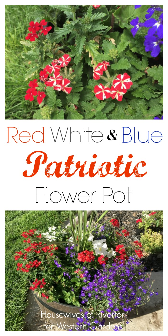 Red, White & Blue Flower Pots to dress up your patriotic 4th of July porch!