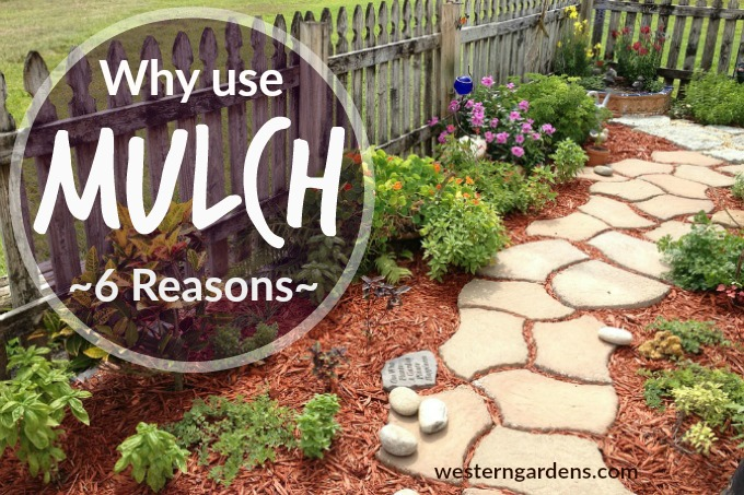 how to keep mulch in place on slope